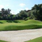 Green 8 Marbella Club Golf Resort