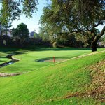 Green 9 Marbella Club Golf Resort