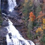 Whitewater Falls-one of the many beautiful waterfalls in our area!