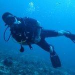 wonderful diving vacation