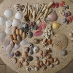 A few days shelling