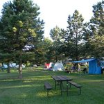 Shaded tent Sites