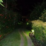 on the way to our garden side room at night.