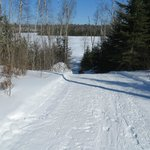 Cross country skiing on groomed trails and frozen lakes