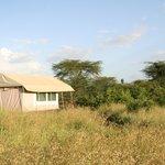 Ein zu Hause im Bush