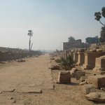 Avenue of Sphinxes - between Karnak and Mut temples