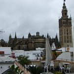 Le Catedral and Giralda from Terrace