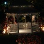 The gazebo at night