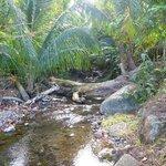 Petite rivière qui se jette à l'Anse Couleuvre