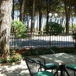 Hotel S. Pietro - l'ampia zona relax nel giardino con veranda