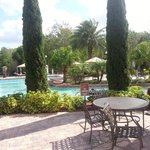 Pileta - Swiming pool