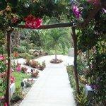 liebevoll bepflanzter Weg im Vista las Islas