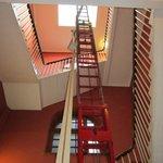 A very long ladder!