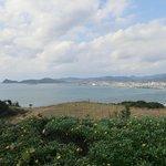 枕崎市街と東シナ海