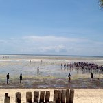 Bassa marea dalla spiaggia