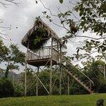 The Farm Inn Palapa for great bird watching