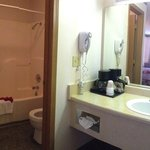 Standard Room Bathroom & Vanity Area