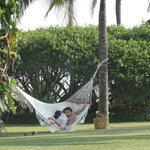Romantic hammock