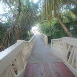Bridge to beach