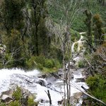 Steavenson's Falls from the top