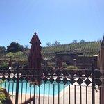 The Meritage: Pool/Trinitas Cellar Wine Cave View