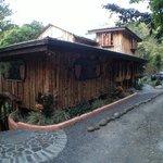 TreeTop House Foto