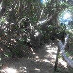 mostra de uma das ladeirinhas/rampas de acesso às dependências da pousada, essa é para ir até a