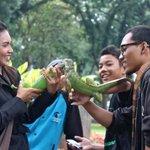 Iguana-lover communirt