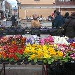 цветочный рынок 8 марта