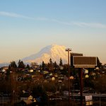 View Of Mt. Rainier From Our Room