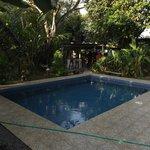 Espace piscine en février 2013.