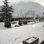 El nostre jardí nevat Gener 2012