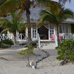 Coco Plum Cottage