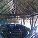 upper level of treehouse