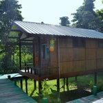 Nature Lodge Kinabatangan