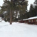 row of cabin duplexes