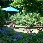 No4 Clifton Village - gardens