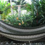 hammock at Cabinas Tropicales