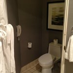 private commode with door that closes--and phone just in case