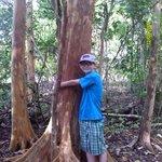 Grandson 'hugging' a tree in Manuel Antonio State Park
