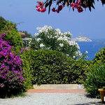 Photo of Residence Capo Bianco filce