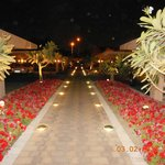 Lighted Gardens Welcome Guests