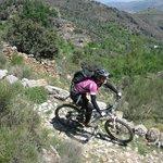 Mountain Biking - rocky mule path
