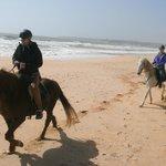 Beach gallop...