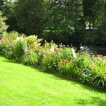 Herbacious Borders C/o Elizabeth (HRH)