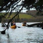 Kayaking down Frenchman's Creek