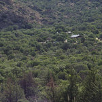 In Evergreen Oak Forest - View of site from the mountain