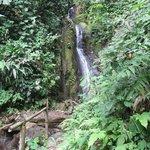 Waterfall at Golfito