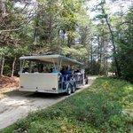 The jeep tour