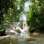 Turtle River Falls & Gardens